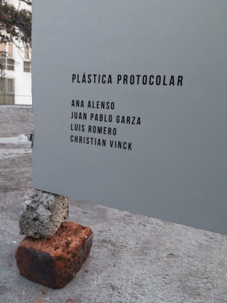 """""""Plástica protocolar"""""""